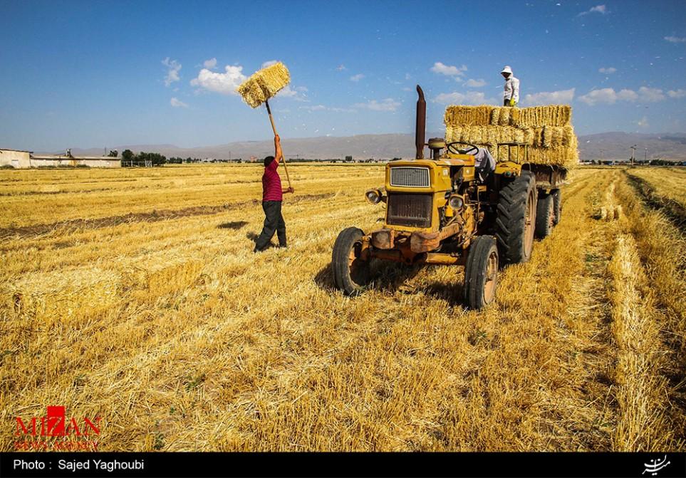 Wasserwirtschaft und Landwirtschaft in Iran